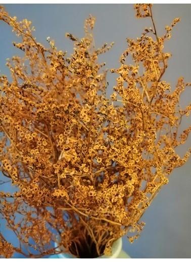 Kuru Çiçek Deposu Şoklanmış Sarı Deniz Otu(Tatarika) (Dökülme Yapmaz) ,Kuru Çiçek Sarı